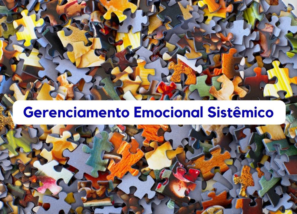 """Gerenciamento Emocional Sistêmico"""